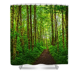 Path In Green Shower Curtain