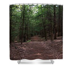 Path In The Woods Shower Curtain by Catherine Gagne