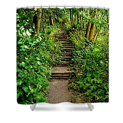 Path Into The Forest Shower Curtain