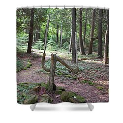 Path Of Choice Shower Curtain