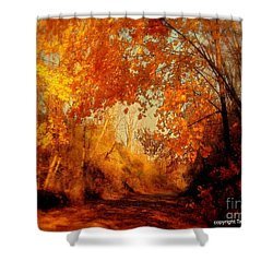 Path Of Gold Shower Curtain