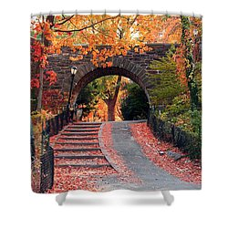 Path Of Leaves Shower Curtain by Catie Canetti
