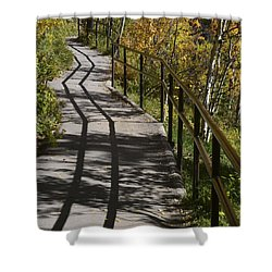 Path Shadow Shower Curtain by Cheryl Miller