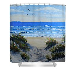 Path Through The Sand Dunes Shower Curtain