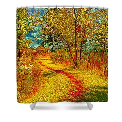 Path Through The Woods Shower Curtain