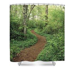 Path Through Woods Shower Curtain by Bert Klassen