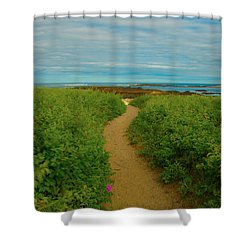 Shower Curtain featuring the photograph Path To Blue by Brenda Jacobs