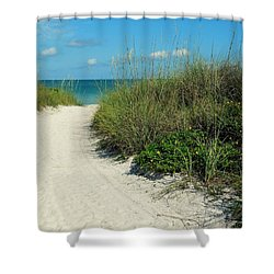 Path To Pass -a- Grille Shower Curtain by Valerie Reeves