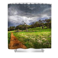Path To The Clouds Shower Curtain