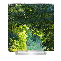Path To The Light Shower Curtain