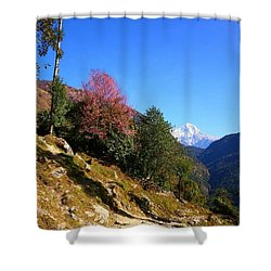 Path To The Mountains Shower Curtain by FireFlux Studios