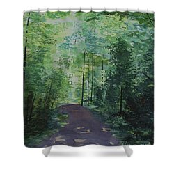 Shower Curtain featuring the painting Path To The River by Martin Howard