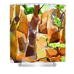 Pathway Through Elephant Rocks 1b Shower Curtain by Kip DeVore
