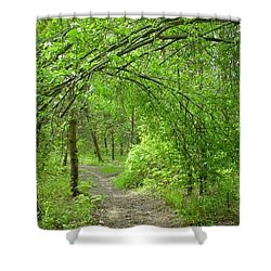 Pathway Through Nature's Bower Shower Curtain