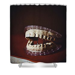 Shower Curtain featuring the photograph Patient 910 by Trish Mistric