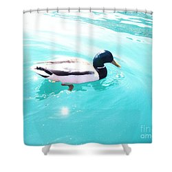 Pato Shower Curtain