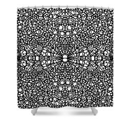 Pattern 26 - Intricate Exquisite Pattern Art Prints Shower Curtain by Sharon Cummings