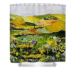 Patterns Shower Curtain by Allan P Friedlander