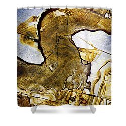 Patterns In Stone - 153 Shower Curtain