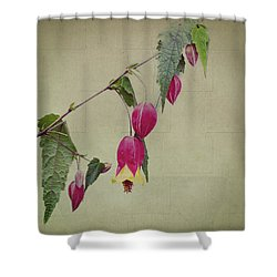 Paulette Shower Curtain by Elaine Teague