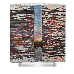 Shower Curtain featuring the painting Pause by Thomasina Durkay