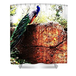 Pavoreal Shower Curtain