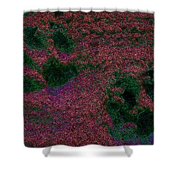 Paw Prints In Red And Green Shower Curtain