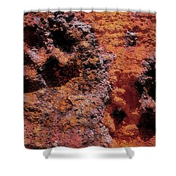 Paw Prints Rust Over Time Shower Curtain