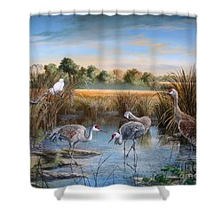 Paynes Prairie Preserve State Park- Day Of The Sand-hill Shower Curtain