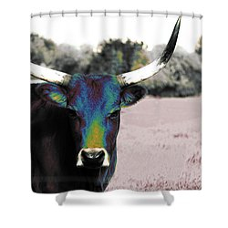 Pazzo Shower Curtain by Molly McPherson