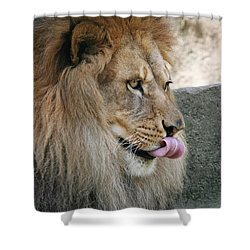 Shower Curtain featuring the photograph Pbbbt by Judy Whitton