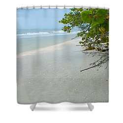 Peace And Quiet On Sanibel Island Shower Curtain