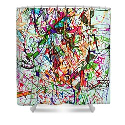 Peace And Wonderment 1 Shower Curtain by David Baruch Wolk