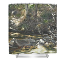 Shower Curtain featuring the painting Peace At Darby by Lori Brackett