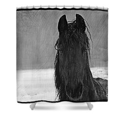 Peace In The Storm Shower Curtain by Michelle Twohig
