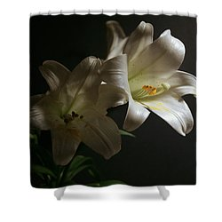 Shower Curtain featuring the photograph Peace Lily by Cathy Harper