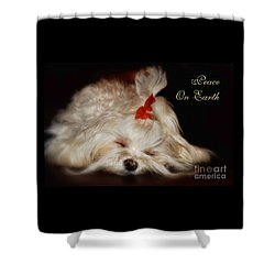Peace On Earth Shower Curtain by Lois Bryan