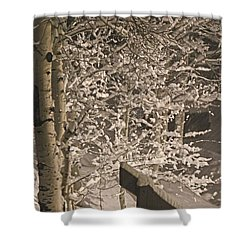 Shower Curtain featuring the photograph Peaceful Blizzard by Fiona Kennard