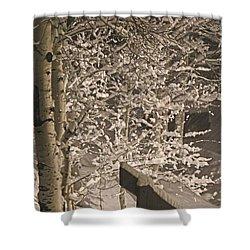 Peaceful Blizzard Shower Curtain by Fiona Kennard