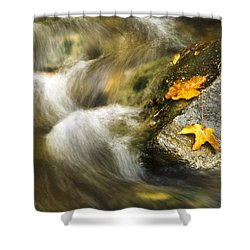 Peaceful Creek Shower Curtain by Christina Rollo