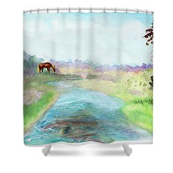 Peaceful Day Shower Curtain by C Sitton