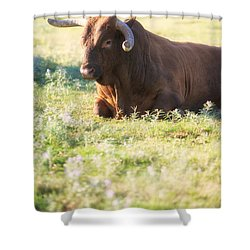 Shower Curtain featuring the photograph Peaceful by Erika Weber