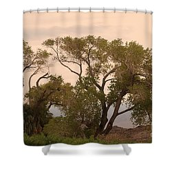 Peaceful Shower Curtain by Kathleen Struckle