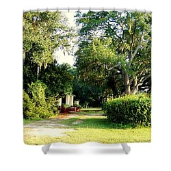 Peaceful Morning Shower Curtain by Catherine Gagne
