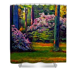 Peaceful Morning Shower Curtain by Michael Durst
