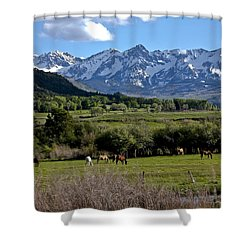 Peaceful Pastures Shower Curtain by Marta Alfred