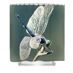 Peaceful Pause Shower Curtain by Melanie Lankford Photography