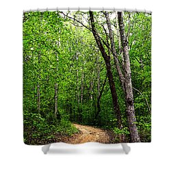 Peaceful Walk Shower Curtain by Lydia Holly
