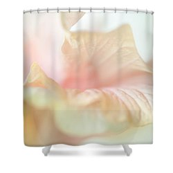 Peach Delicacy. Hibiscus Macro Shower Curtain by Jenny Rainbow