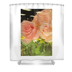 Peach Roses In Greeting Card Shower Curtain